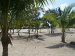 Belize tropical images